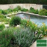 бассейн с ландшафтом